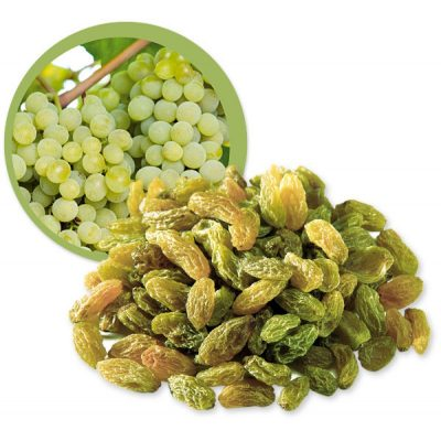 PROCESSING AND MANUFACTURING ADD ALSO GREEN RAISINS